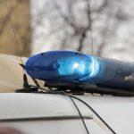 В Петербурге на участке в роддоме №1 наблюдателей взяли в заложники