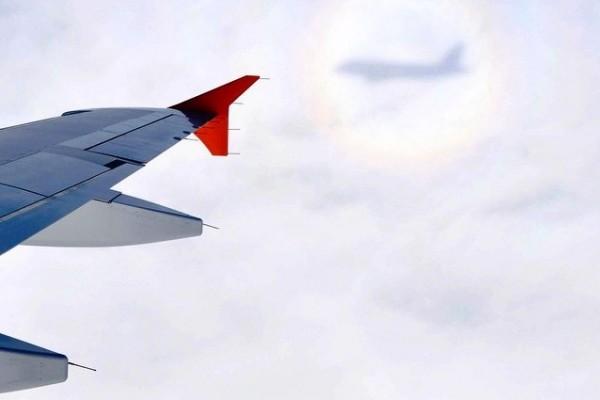 россия авиакомпания самолет авиация