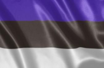 В Эстонии на президентские выборы зарегистрировался один кандидат — Выборы пройдут в понедельник