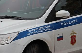 Выборы в Петербурге будут охранять более 11 тысяч полицейских — «Лояльных и культурных»