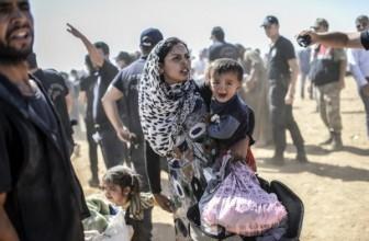 Обама и Меркель обсудили по телефону сирийский кризис — Обама поддержал нормандский формат